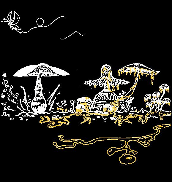 Invasion du blob sur le champignon dans la nature
